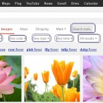 Different filters are available for Google Image Search