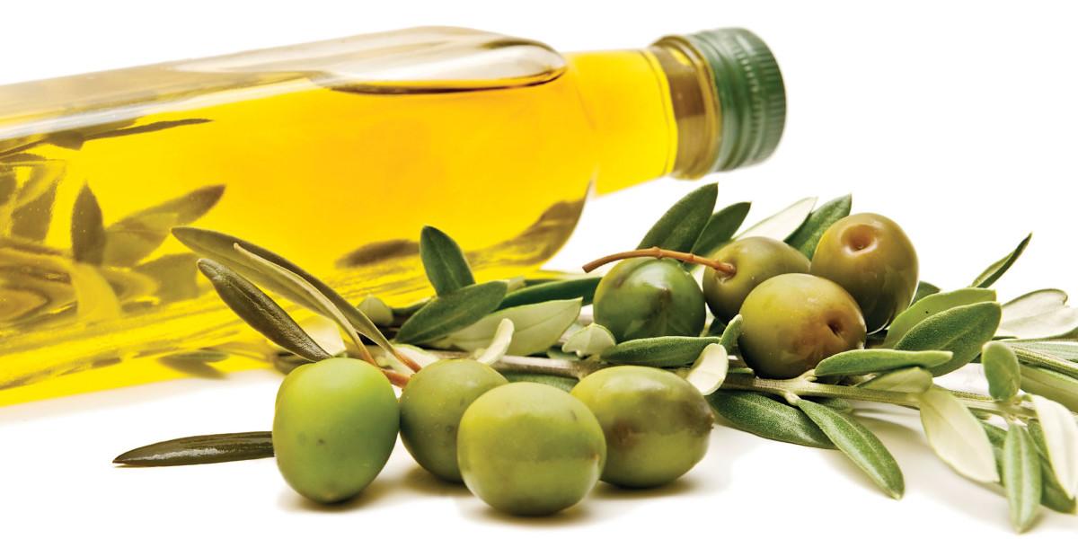olive-oil-branch-www.searchub.com
